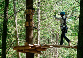 Forest adventure parks, Vendee